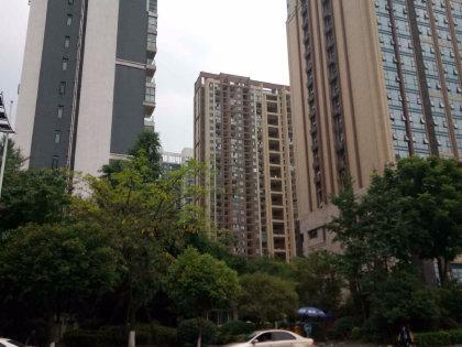 珠江国际花园